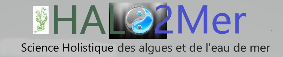 logo_halo2mer